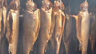 Засолка и холодное копчение рыбы полный обзор