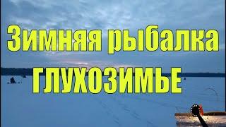 РЫБАЛКА В ГЛУХОЗИМЬЕ Беларусь Красная Слобода Ловля щуки на жерлицы в глухозимье ЗИМНЯЯ РЫБАЛКА