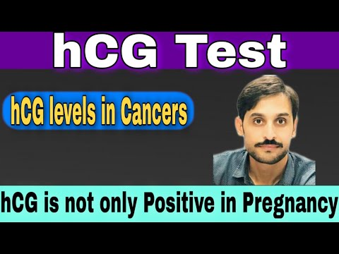 Human chorionic gonadotropin (hCG) hormone in pregnancy and cancers