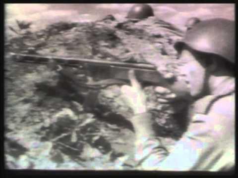 La Batalla de Kursk III