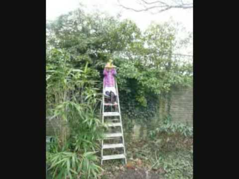 Kinder tuin kabelbaan youtube - Outs zwembad in de tuin ...
