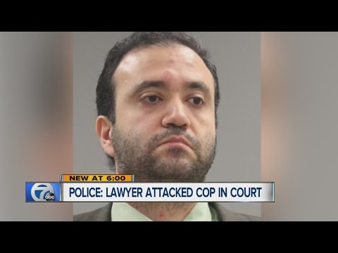 Lawyer accused of punching police officer