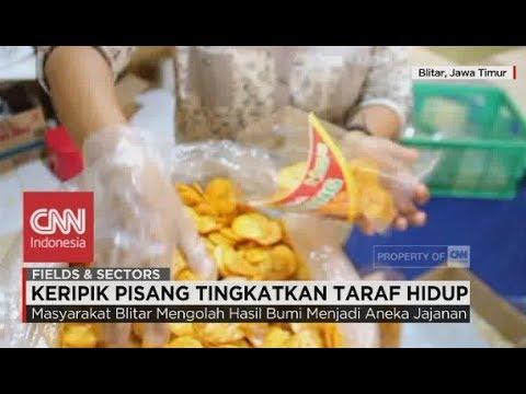Geliat UKM Blitar Tembus Pasar Nasional; Keripik Pisang Tingkatkan Taraf Hidup