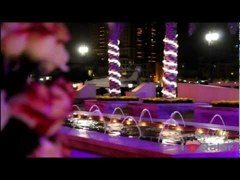 Anima Lounge & Gallery Opening - The Pearl Qatar