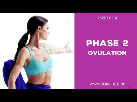 all-about-phase-two-|-the-ovulatory-phase-|-part-2-of-4
