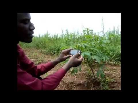 101 Ways To Make Money in Africa - Business Ideas for Entrepreneurs in Africa - Mobile Apps
