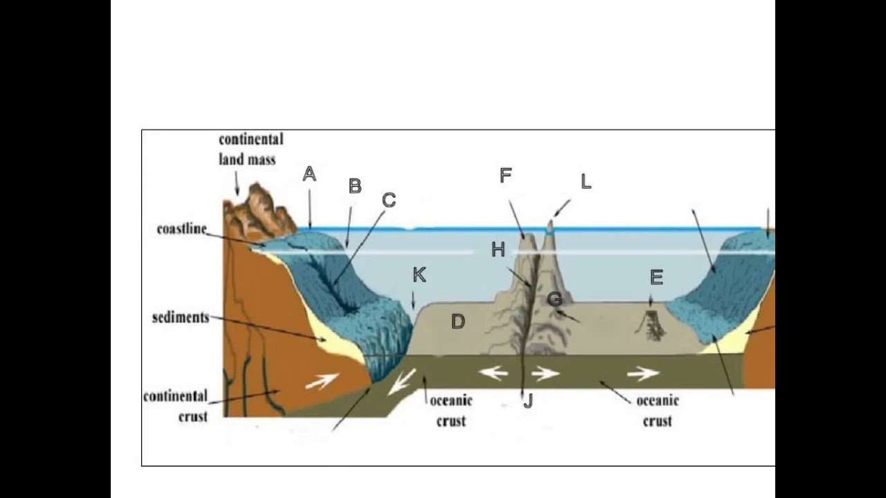 Worksheets Features Of The Ocean Floor Worksheet ocean floor topography youtube