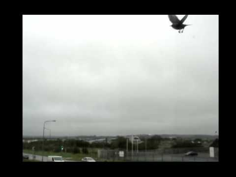 Waterford Weather Live Stream