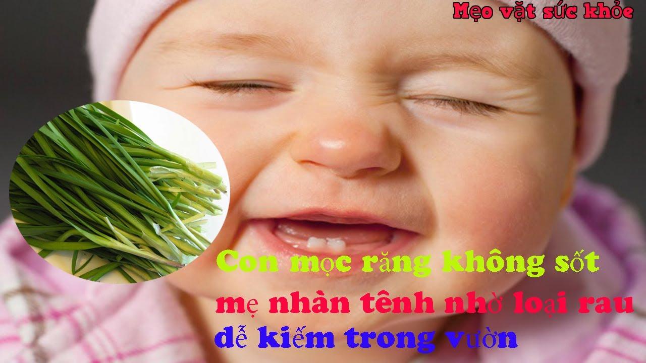 Con mọc răng không sốt mẹ nhàn tênh nhờ loại rau dễ kiếm trong vườn