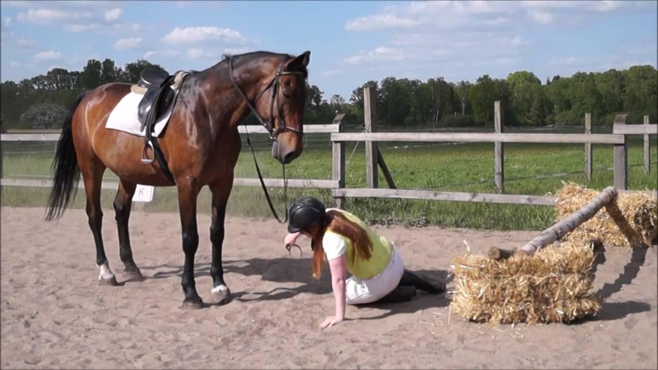 15 Arten Wie Man Besser Nicht Vom Pferd Steigt!