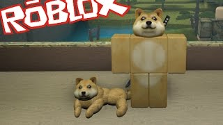 Roblox DOGE TYCOON / MORPH IN TO A DOGE AND BECOME A MILLIONAIRE!! Roblox