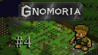 Let's play Gnomoria #4 - From wilderness to workyard