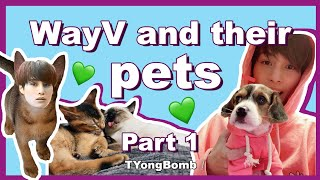 WayV and their Pets being a mess | Part 1