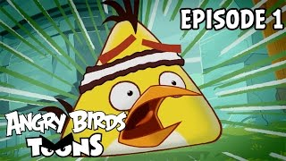Angry Birds Toons | Chuck Time - S1 Ep1