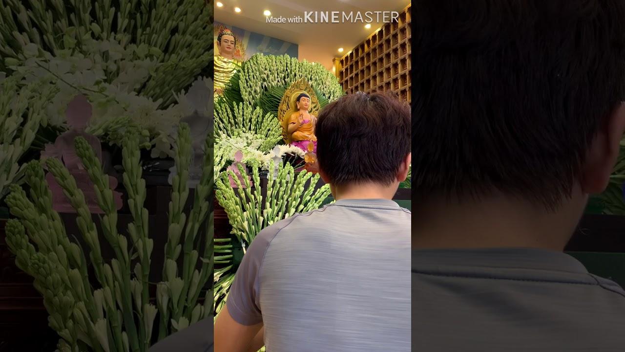 Hướng dẫn cắm hoa  -Hoa Huệ Ngũ Sắc – Đàn Dược Sư ở chùa Thiện Mỹ
