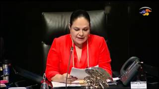 Segunda parte de la sesión ordinaria de la Cámara de Senadores del 25 de abril de 2019