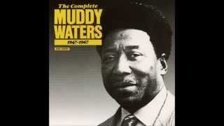 Muddy Waters, Hard loser