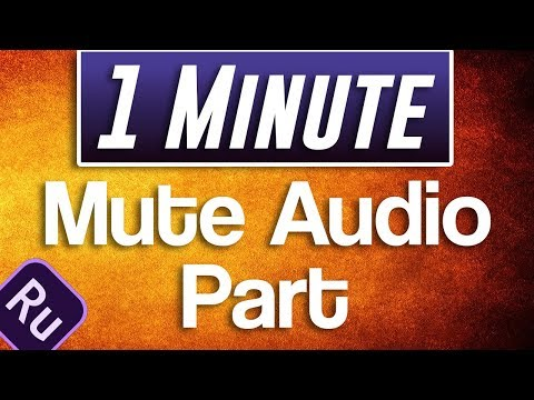 Premiere Rush CC : How to Mute Part of Audio
