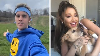 Download Lagu Justin Bieber and Ariana Grande s Stuck With You ALL the Celeb Cameos MP3