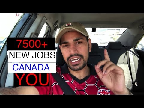 7500+ Jobs in New Brunswick Canada 2019