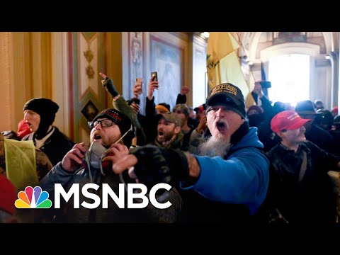 Beschloss: This Was A Terrorist Attack Initiated By Trump   The 11th Hour   MSNBC