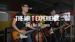Watch Mr T Experience Shes Not A Flower video