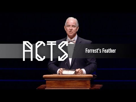 Forrest's Feather