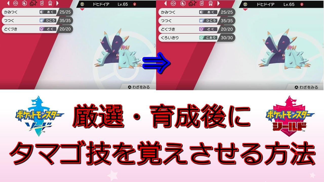 厳選 タマゴ ポケモン 盾 剣