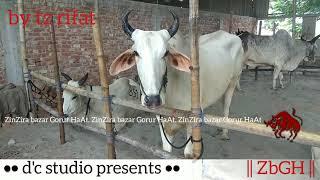 004 | Eid ul Azha 2019 | Bolod Lineup | New Collection | Sharif Agro | ZbGH 2019