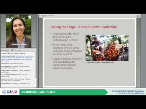 Scaling Up Private Sector Investment and Finance for Sustainable Landscapes in Southeast Asia