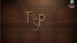 Video True Peace the Secret of Life, Areeb Islam, Part 1 download MP3, 3GP, MP4, WEBM, AVI, FLV Oktober 2018
