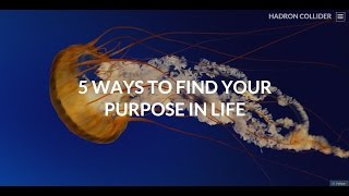 Day 1: How to find your purpose in life: 5 Ways to your true purpose: Life on your terms: Day 1 - FB