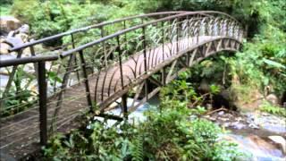 九寮溪自然生態步道園區(河流篇)