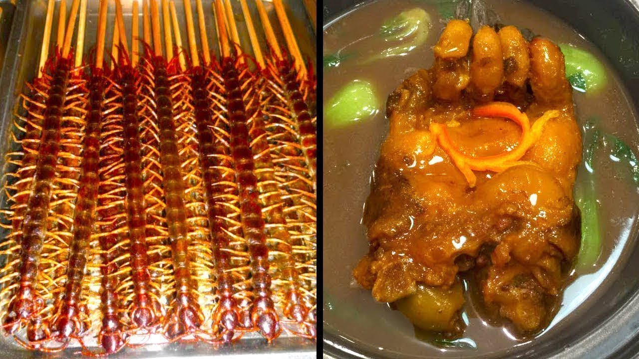Download Unusual Foods that Only Exist in China