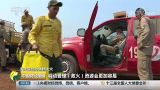 [中国财经报道]关注亚马孙雨林大火 大火持续肆虐 救火力度加大| CCTV财经