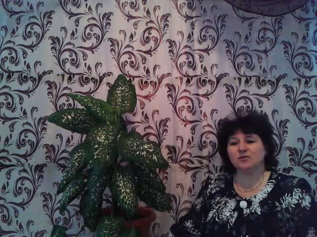 Изображение предпросмотра прочтения – ОксанаПанченко читает произведение «Россия» А.А.Блока