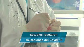 Es la cuarta farmacéutica de EU en llegar a esta etapa, mientras estudio revela mutaciones constantes del coronavirus y Europa suma 5 millones de contagios