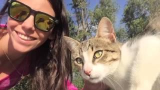 Nela Passport: Ciudad de Caraz - Ancash - Peru con mascotas