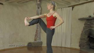 Extended Hand to Big Toe Pose, Yoga
