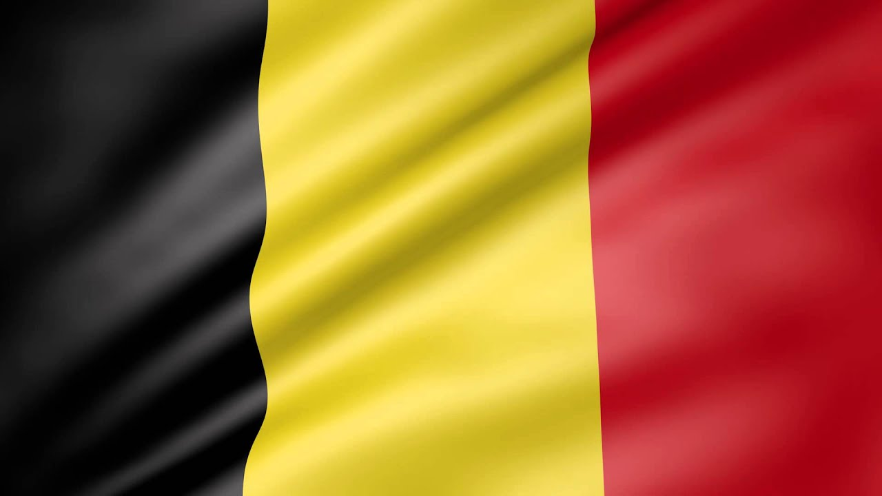 Image result for belgium flag