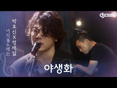 [DJ티비씨] 박효신, 정재일 - 야생화 ♬ #너의노래는 #DJ티비씨