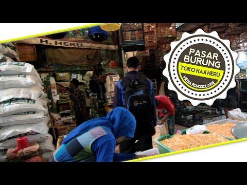 presiden cup burisrowo bird shop depok supermarket s
