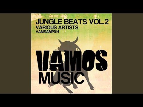 Los Gaiteros (Original Mix)