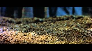 Атака пауков - Трейлер