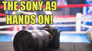 THE SONY A9!! HANDS ON with this new Powerhouse Camera!