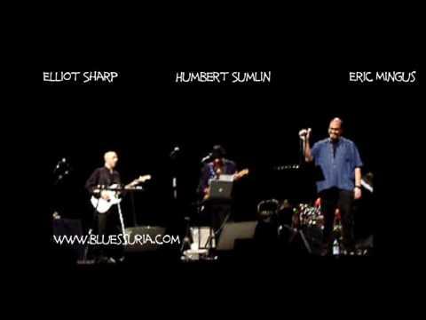 Elliott Sharp & Terraplane with Hubert Sumlin Milano 26.11.2007