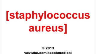 Pronounce Staphylococcus Aureus | SpeakMedical