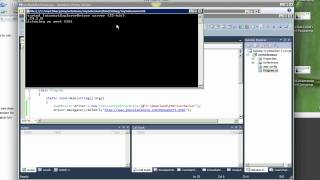 Selenium 2.0 WebDriver with Visual Studio, CSharp & IE - Getting Started