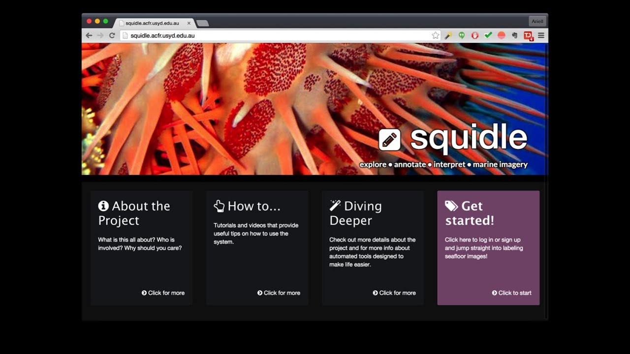 Squidle - manage, explore and interpret marine imagery online ...