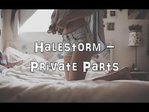 Halestorm - Private Parts [Acoustic Cover.Lyrics.Karaoke]